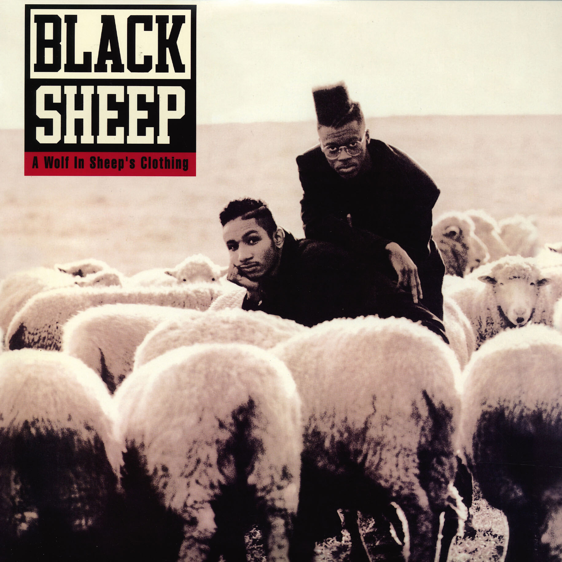 Wpgm Revisits Black Sheep A Wolf In Sheeps Clothing Album