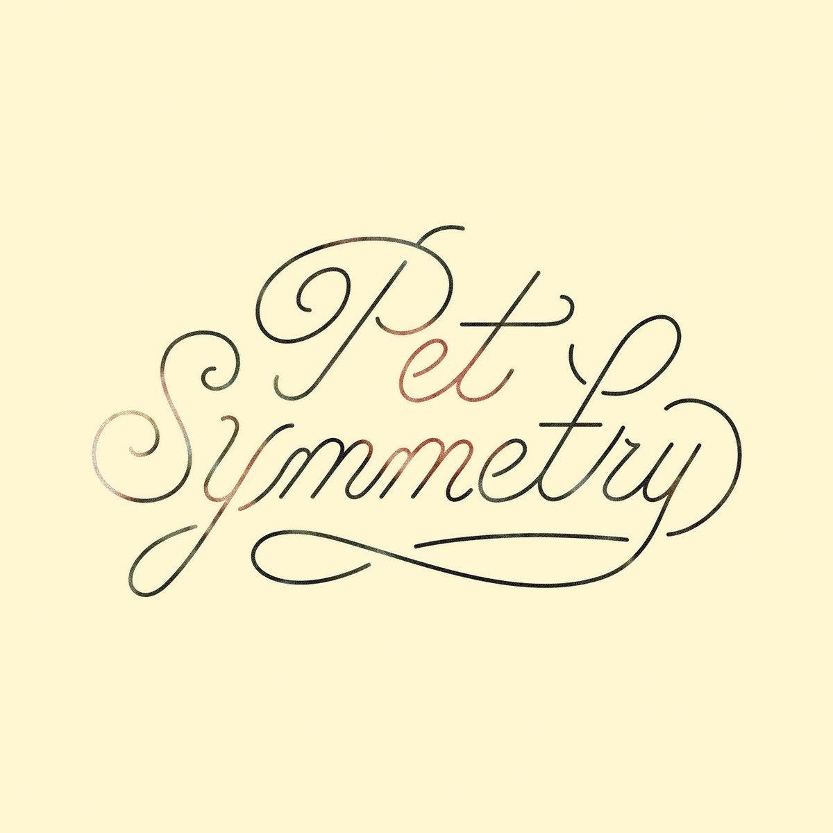 vision pet symmetry