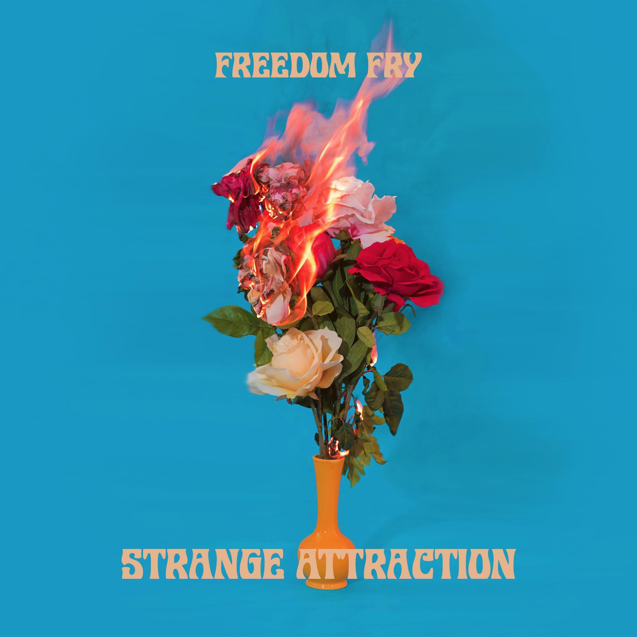 freedom fry strange attraction
